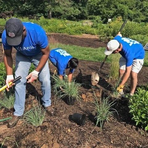 Arboretum Volunteers 2