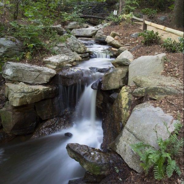 https://greensborobeautiful.org/wp-content/media/Serenity-Falls-3-scaled-e1623309787332-600x600.jpeg