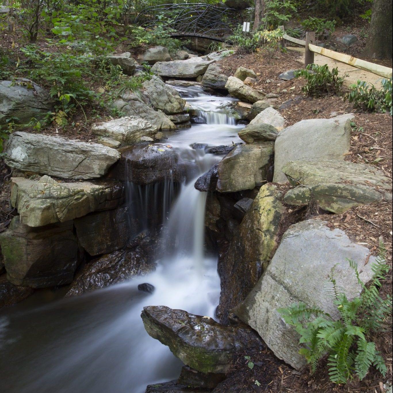 https://greensborobeautiful.org/wp-content/media/Serenity-Falls-3-scaled-e1623309787332.jpeg
