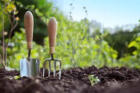 garden classes image