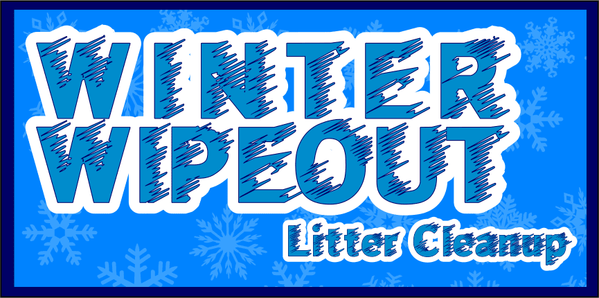 winter wipeout img
